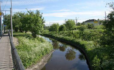 Река Волковка
