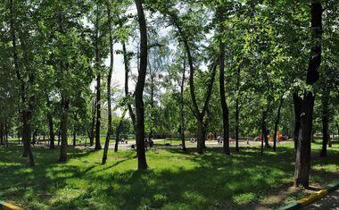Детский парк Липки