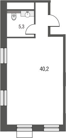 Свободная планировка, 45.5 м²– 2