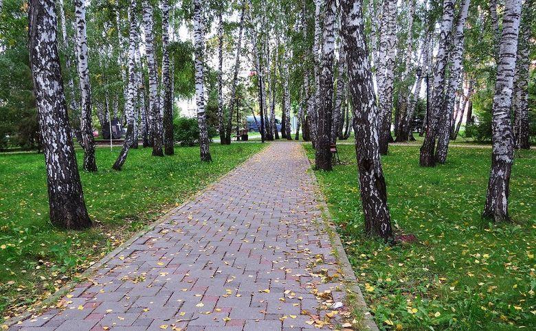 Березовая роща, парк Ходынское поле в пешей доступности
