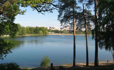 Нижнее Большое Суздальское озеро