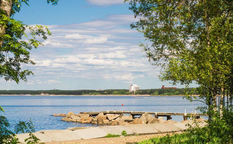 Квартиры с видами на Финский залив и Юнтоловский заказник