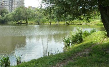 Река Сетунька