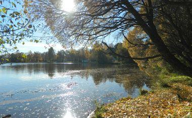 Озеро Сестрорецкий разлив